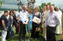 Tree planted in memory of Aine